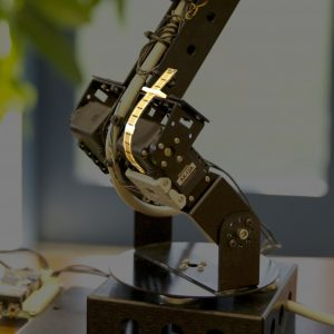 Robot Arm - Printed Electronics